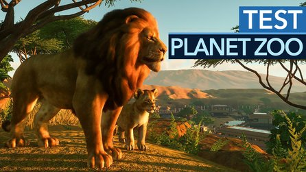Planet Zoo im Testvideo - Der König der Zoo-Simulationen